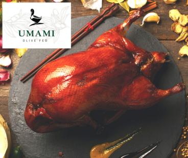 Umami Duck