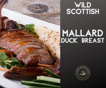 Wild Mallard Duck Breast