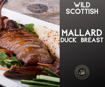 Wild Mallard Duck Breast
